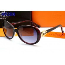 Hermes Sunglasses 13 RS10683