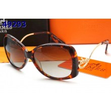 Hermes Sunglasses 18 RS14195