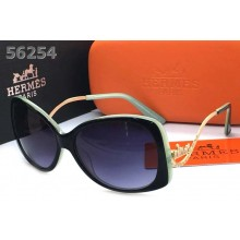 Hermes Sunglasses - 88 RS20510
